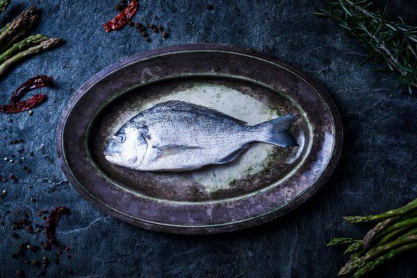 דגים שלמים