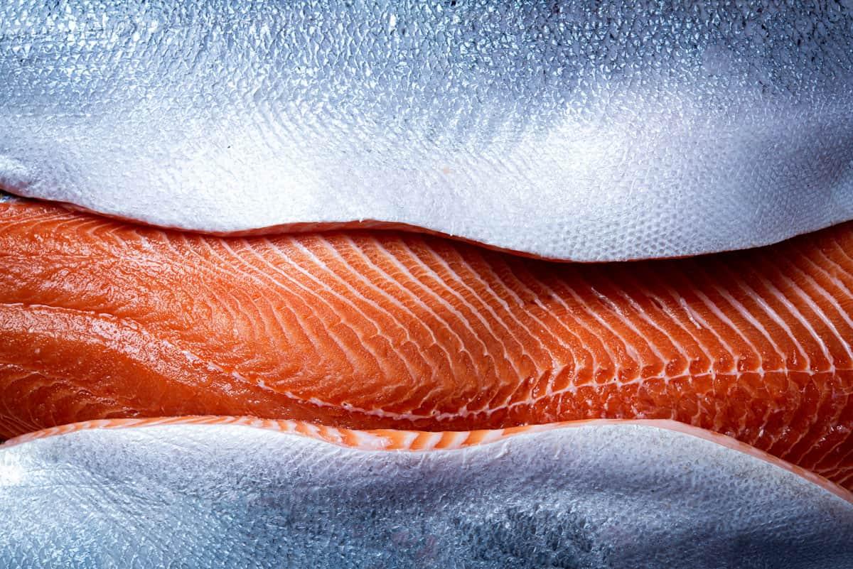Fresh Norwegian Salmon Fillet